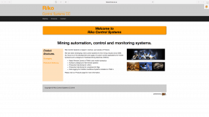 Riko Website Design