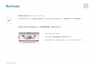 Website maintenance backup